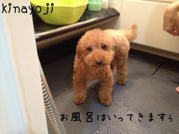 0923お風呂2