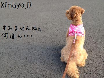 一人散歩3