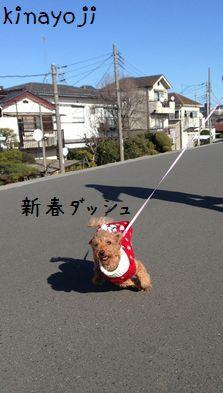 新春お散歩