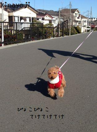 新春お散歩4
