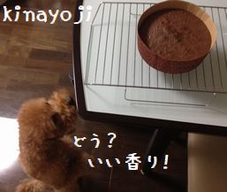 ケーキづくり3