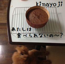 ケーキづくり4