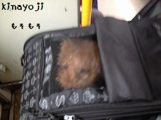 バス移動2