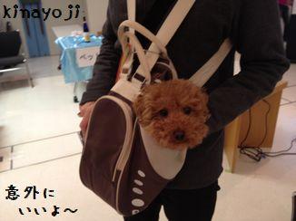 きなさんバッグ4