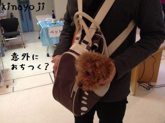 きなさんバッグ3