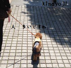 元町散歩2