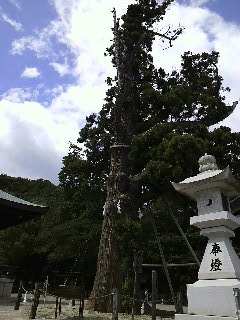 吉備津彦神社2