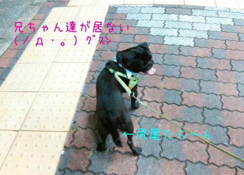 2012081405.jpg
