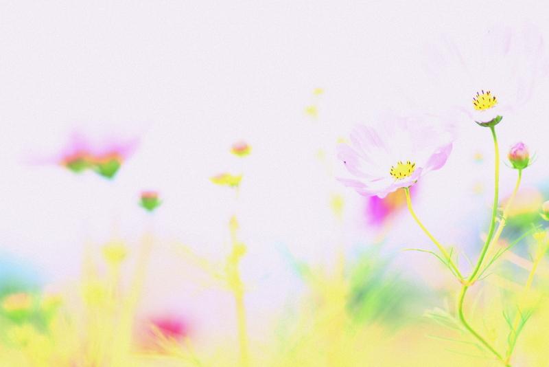 20121006_0631.jpg