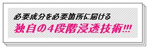 Shiozawashiki-010.png