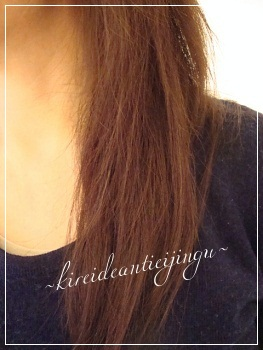 hairdo-001_20141110095352d37.jpg