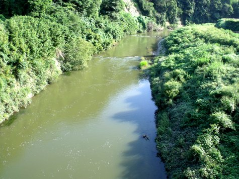 画像ー253 大多喜町・忠勝の像と柳原地区といすみ鉄道 021-2