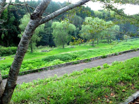 画像ー253 大多喜町・忠勝の像と柳原地区といすみ鉄道 053-2