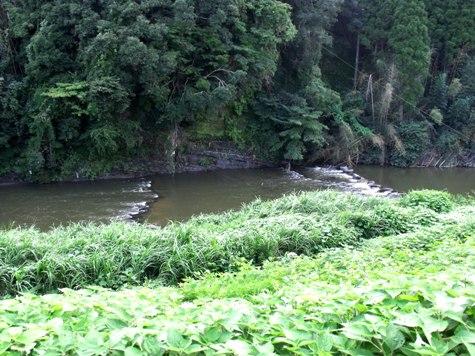 画像ー253 大多喜町・忠勝の像と柳原地区といすみ鉄道 055-2