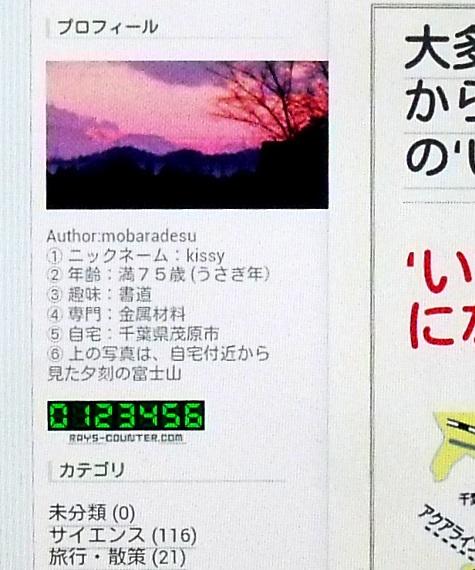 画像ー255 大多喜町 お城まつり 002-3