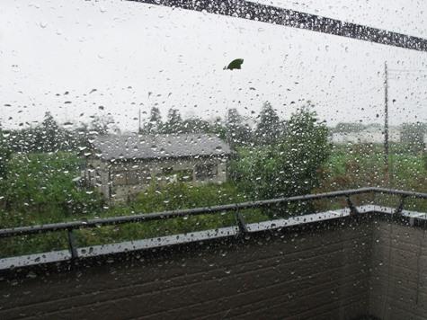画像ー256 台風来る! 017-2