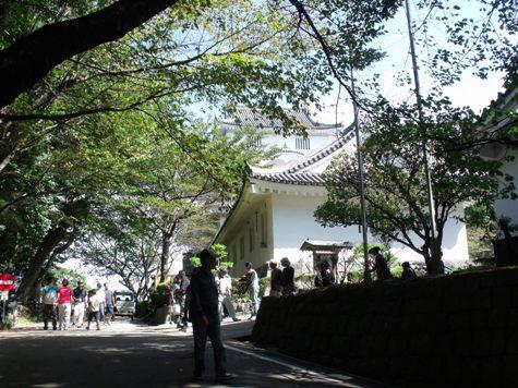 画像ー255 大多喜町 お城まつり 130-2