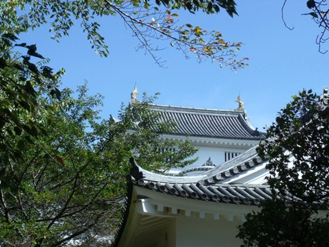 画像ー255 大多喜町 お城まつり 131-2