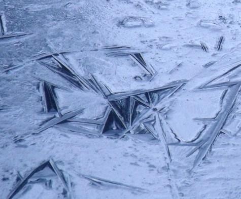 画像ー268 初氷 011-3