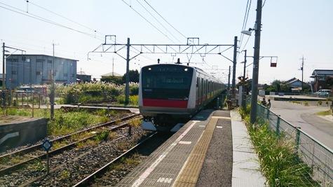DSC_0046-2.jpg