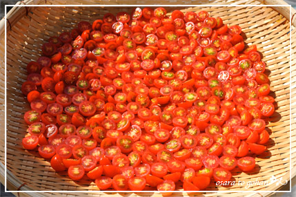 ドライトマト 天日干し