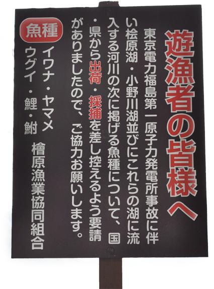 hibarako.jpg