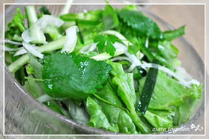 iittala salada