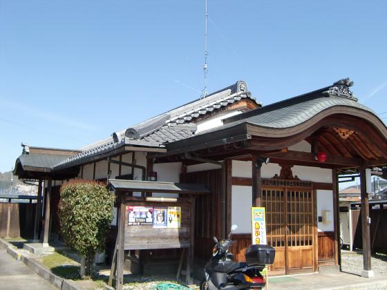 安土の桜2012-02