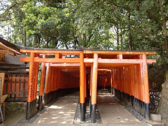 京都伏見稲荷大社で山登り09