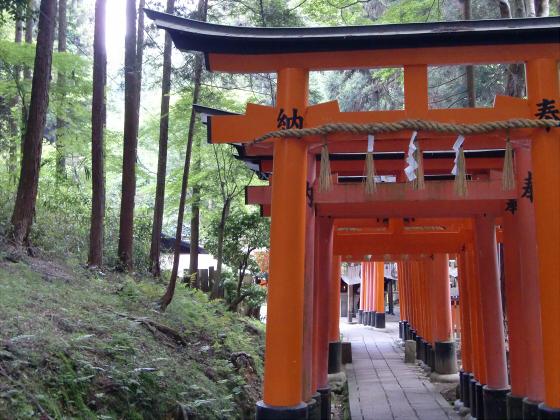 京都伏見稲荷大社で山登り18