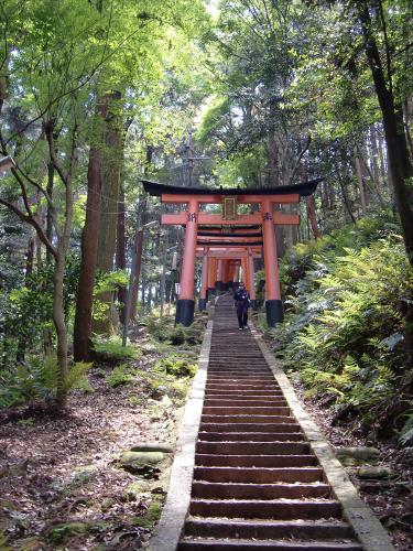 京都伏見稲荷大社で山登り26