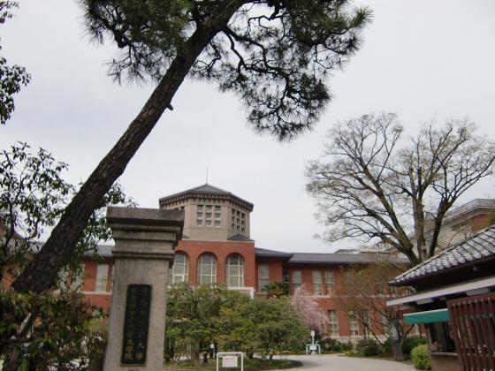 鴨川の桜~白峯神社06