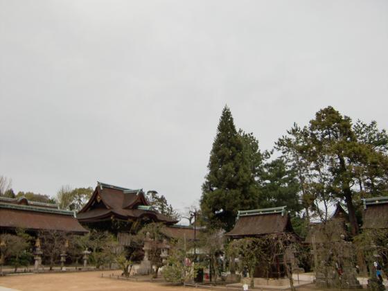 京都北野天満宮にて11