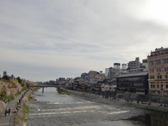 京都の桜2012-番外編09