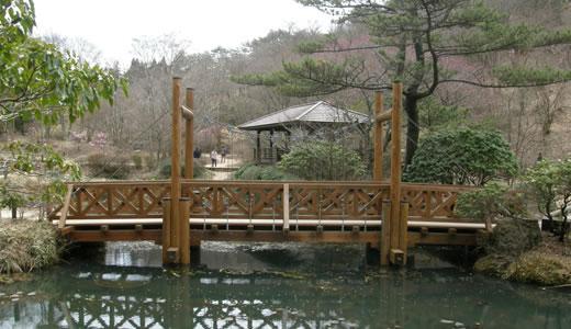 六甲高山植物園2012・春-1