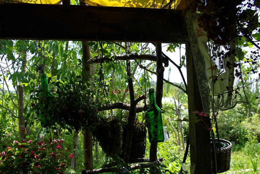 ターシャの庭04
