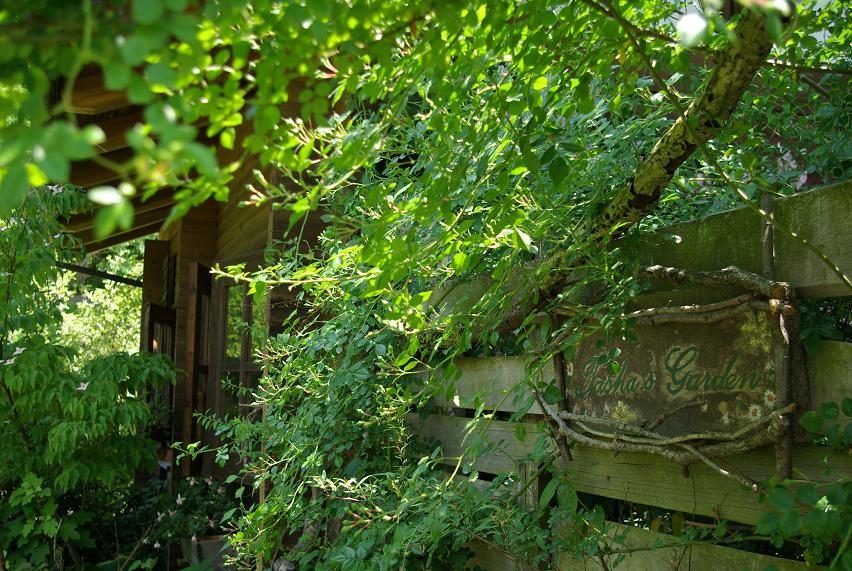 ターシャの庭01