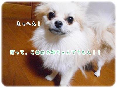 DSCN3538.jpg