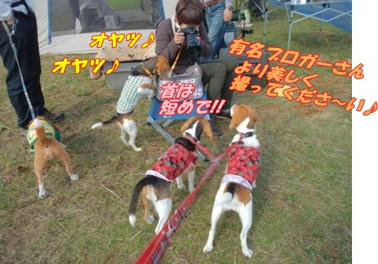 DSCN2108_20121112144255.jpg
