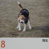 DSCN3165_20121209150227.jpg