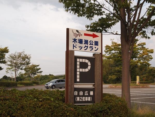 P8271767.jpg
