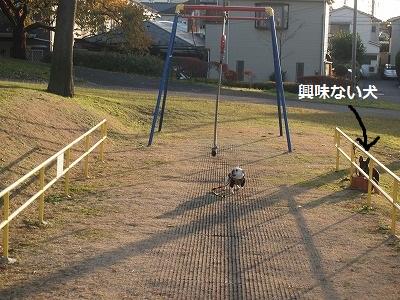 s-25PC074154.jpg