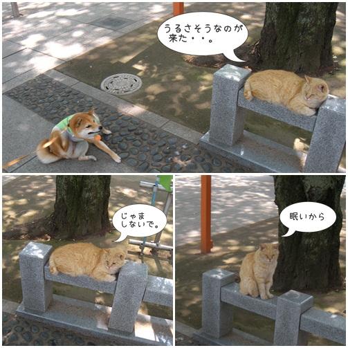 201205太麺焼きそば4