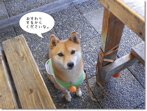20120529新東名③-3