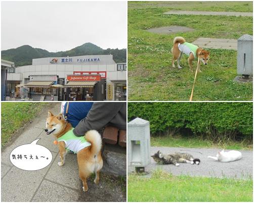 20120529新東名③-6