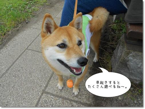 20120529新東名③-7