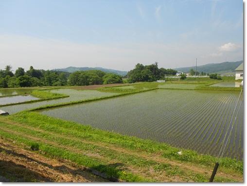 長野の旅①-5