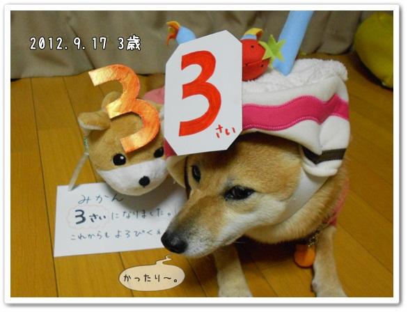 みかん3歳!6
