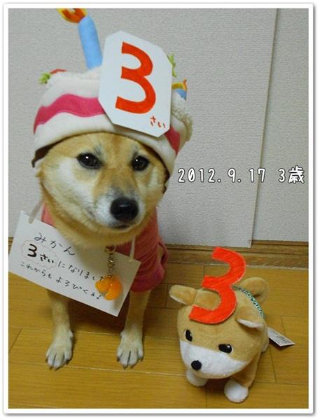 みかん3歳!5