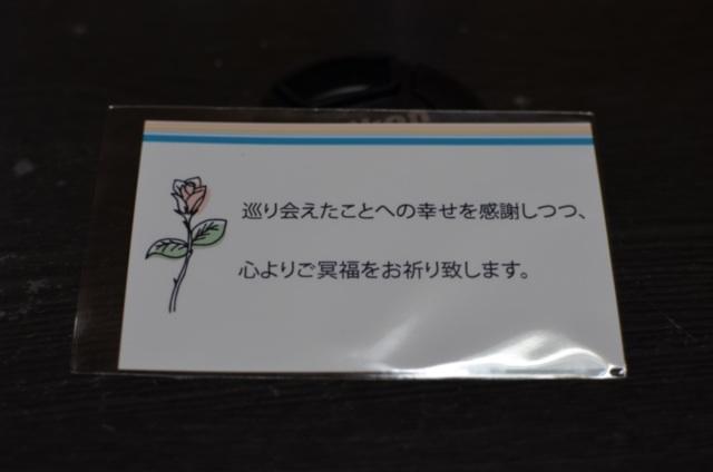 image_20130309213946.jpg